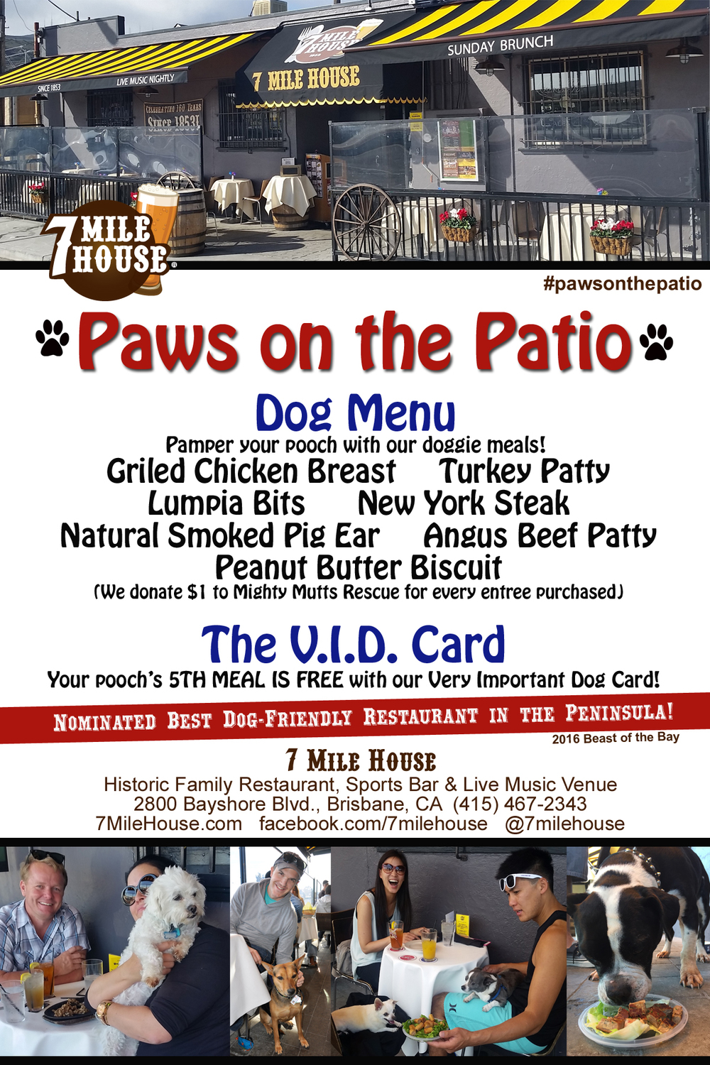 7 mile house paws on the patio