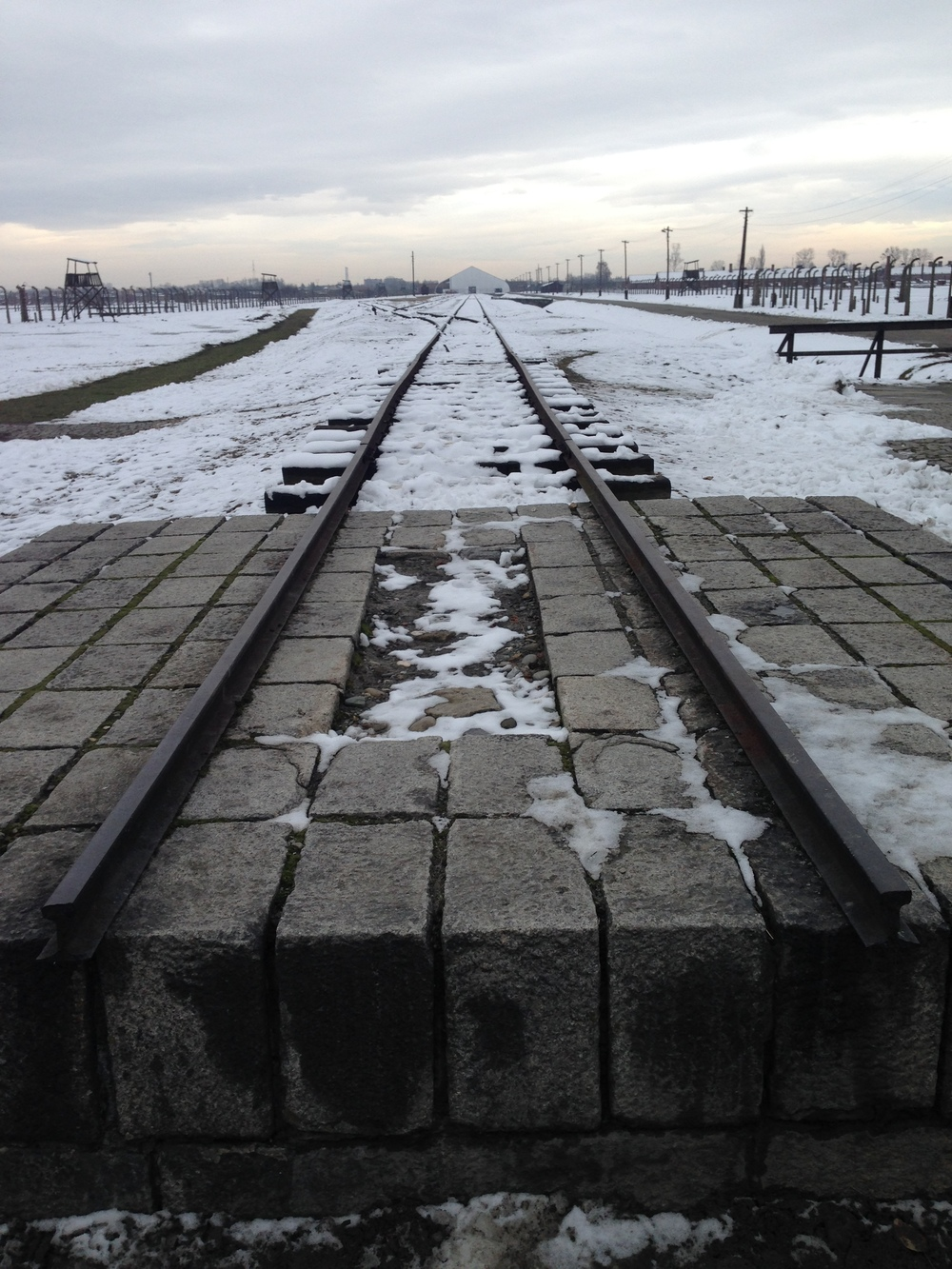 End of the line: The gateway is visible at the front of Auschwitz, though is partly obscured by a tent which was used for the 70th anniversary of the liberation of Auschwitz remembrance service.