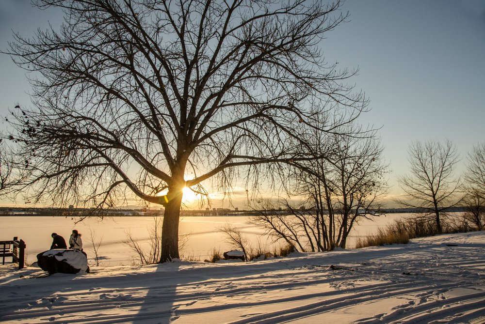 Wintertime at Cherry Creek State Park. Image credit:  Cathy McCray / Creative Commons