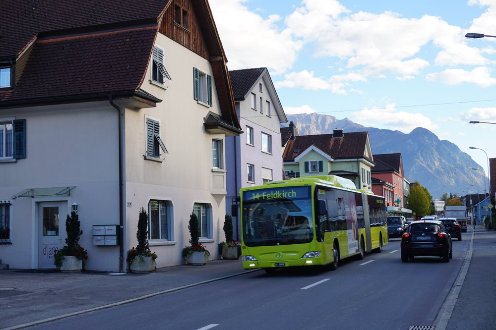 Liechtenstein's buses are a distinctive green colour.
