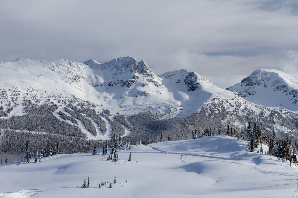 Whistler is one of the world's top ski destinations. Image credit:    yashima   /   Creative Commons