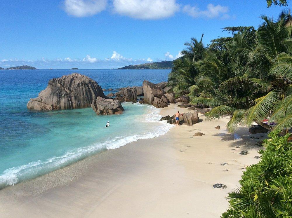 Seychelles-Beach-Rocks-Palm-Trees