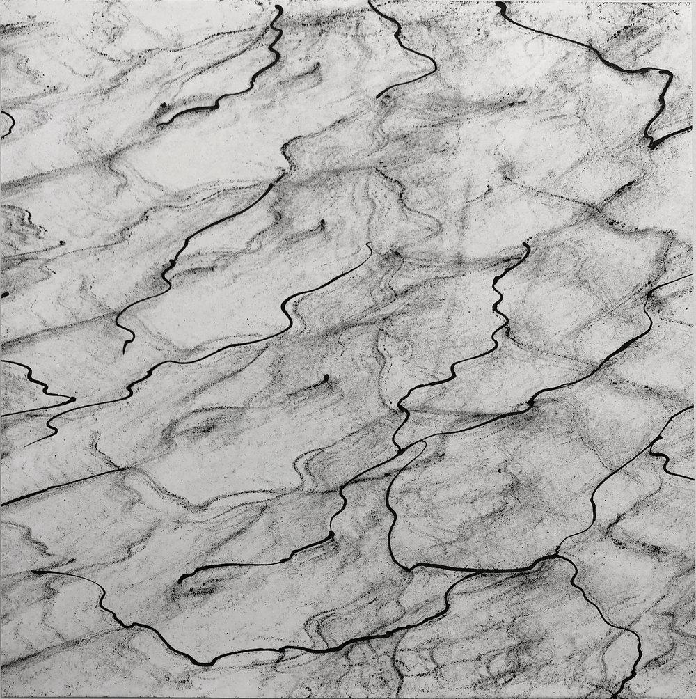 Burl, 19x19, Ink on Paper