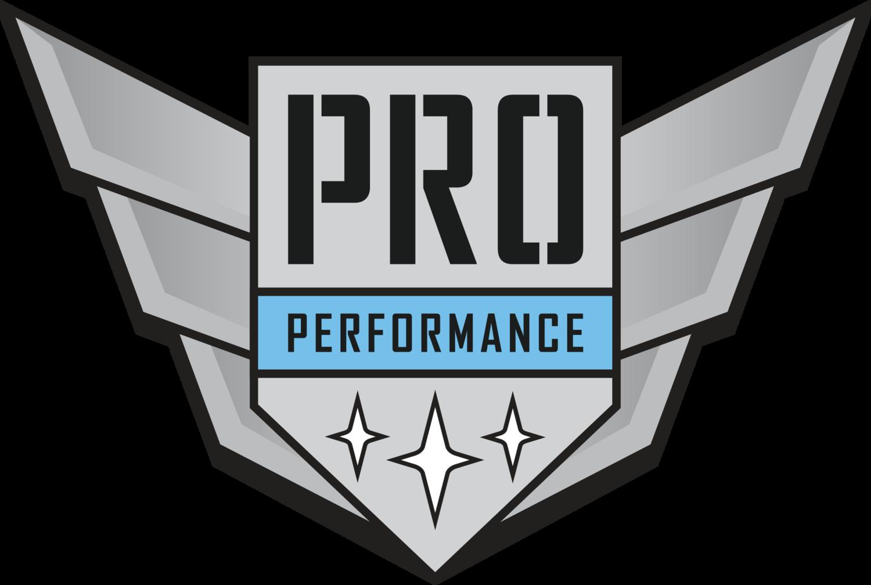 pro performance mentorship from pros mental training sports