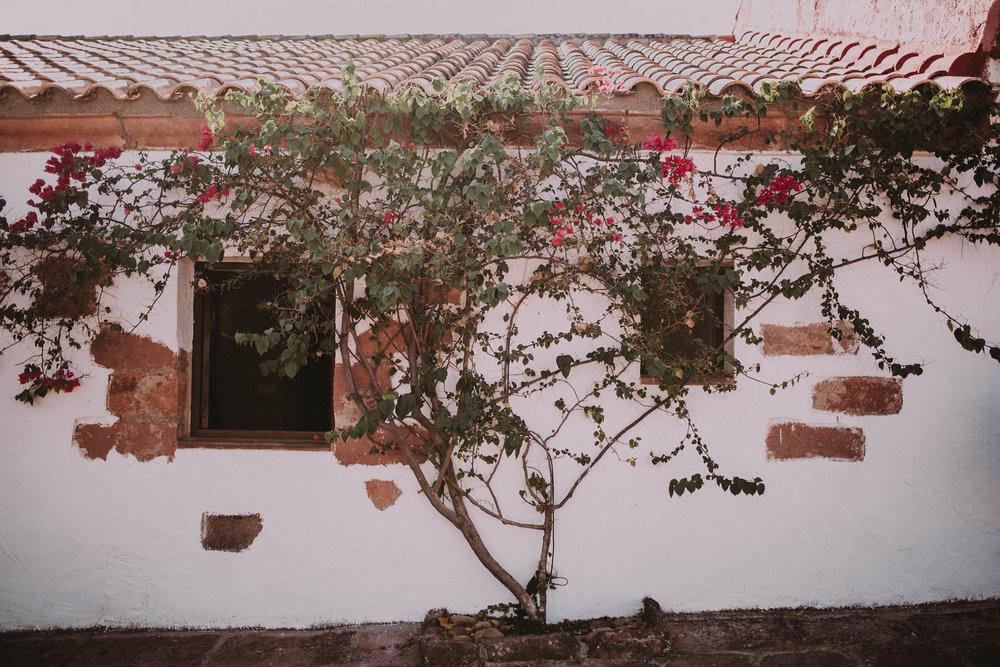 boda-lacolora-ernestovillalba-0251_ASE.jpg