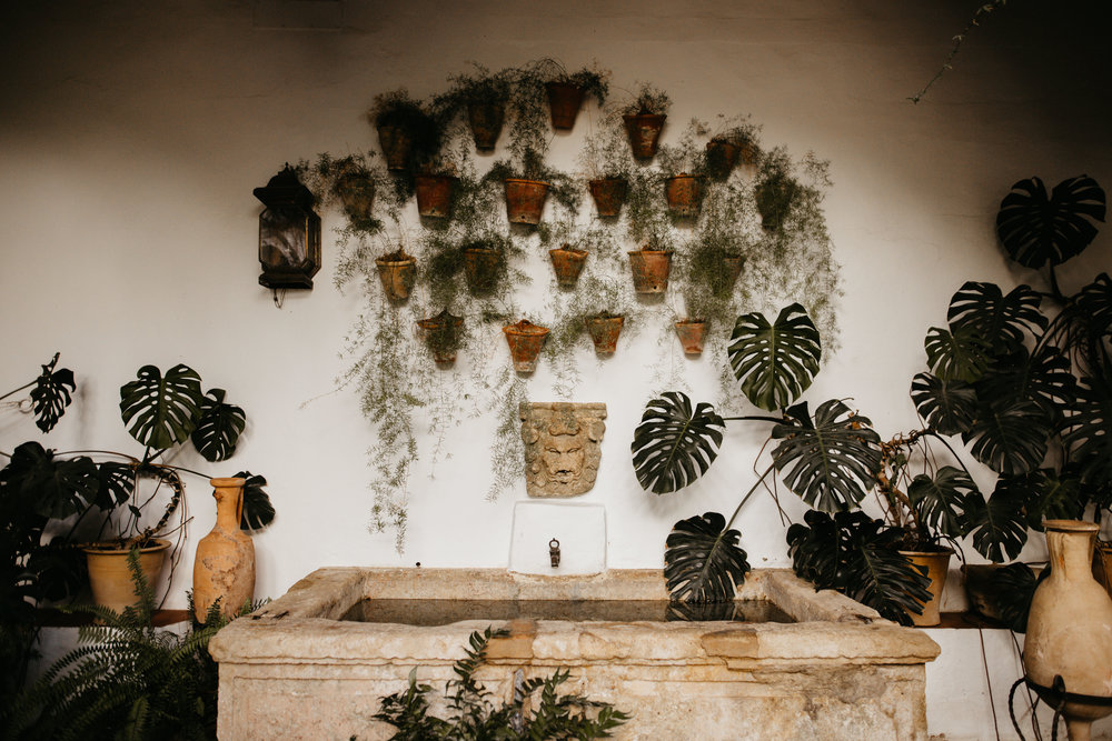 decorate a wedding with potted plants and greenery