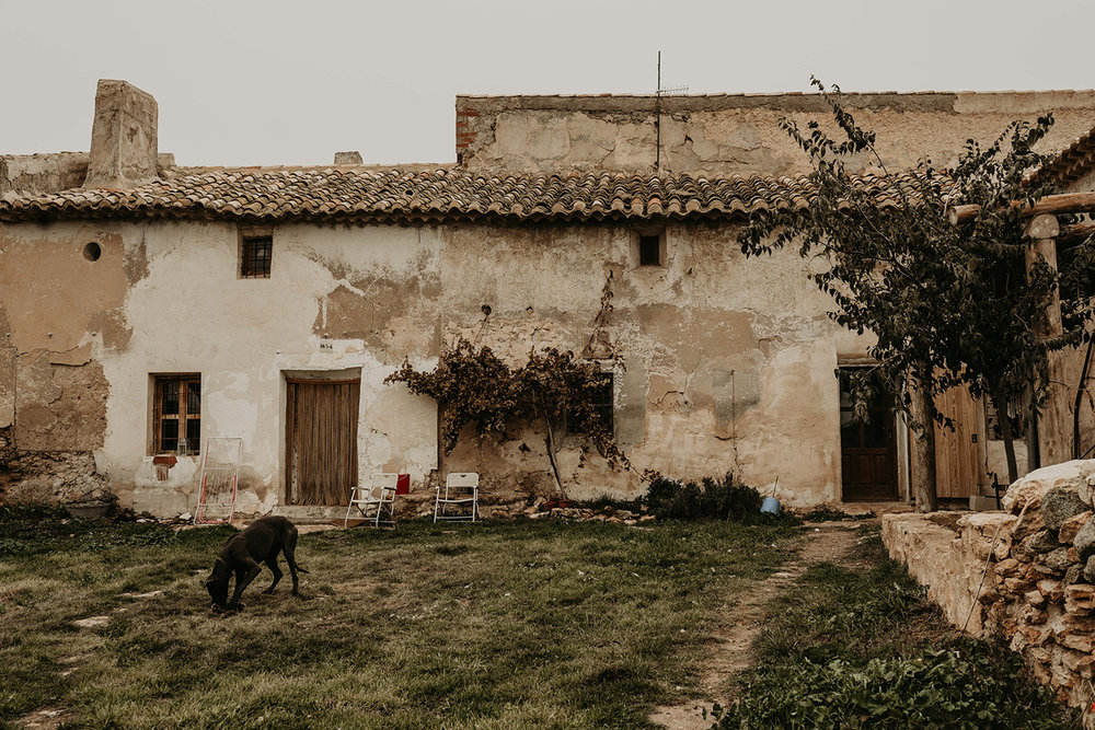 Eco restoration Murcia Spain-24.jpg