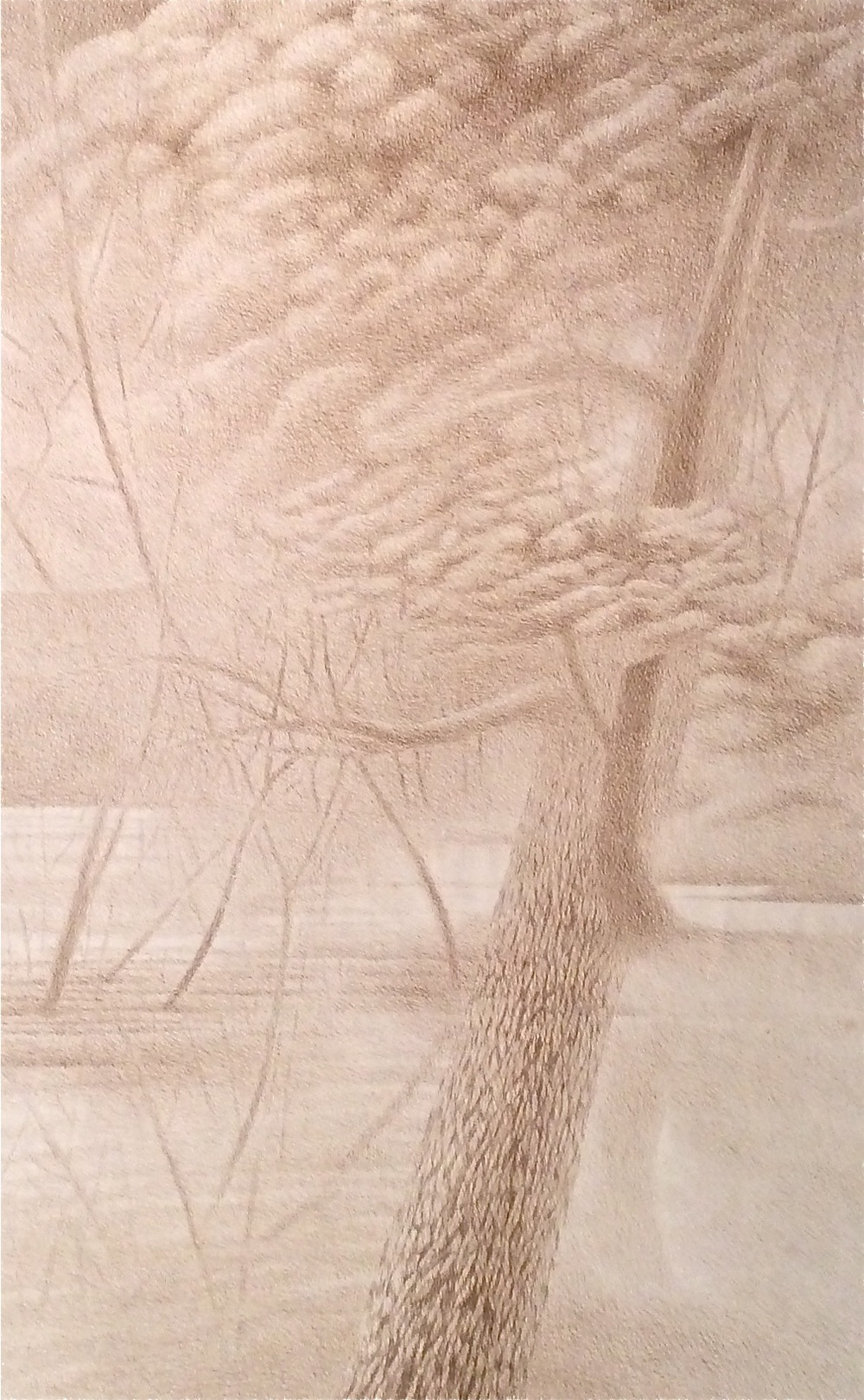 "Co-Incidence (1977)  sepia ink  40"" H x 25"" W"