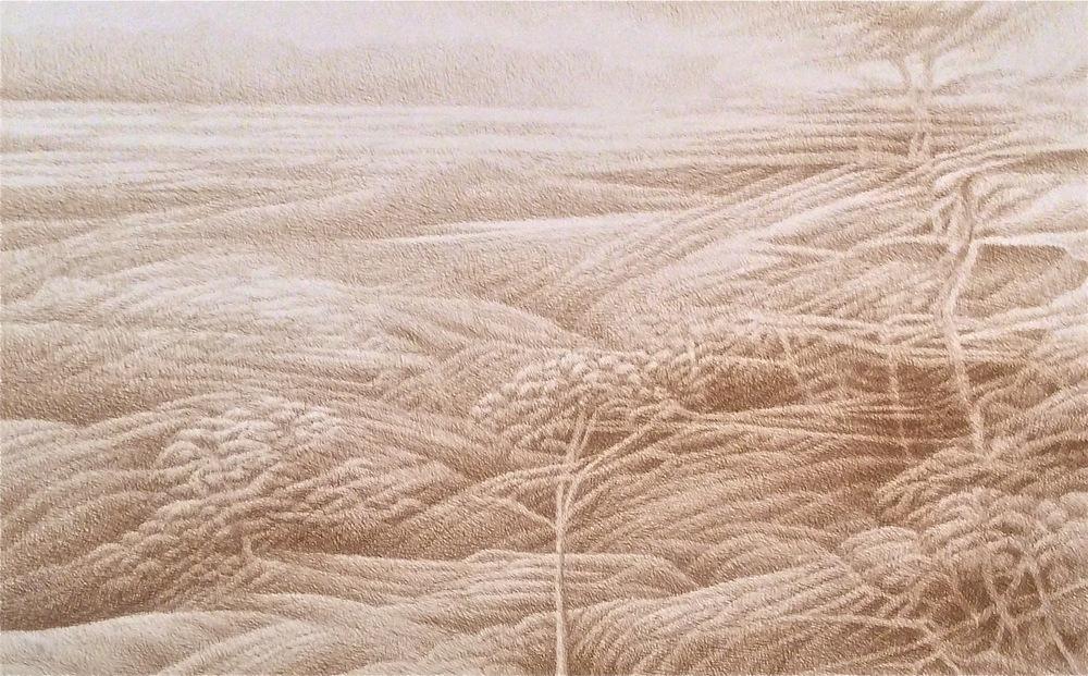 """Romantic Landscape 1 (1973)  sepia ink  24"""" H x 38"""" W"""