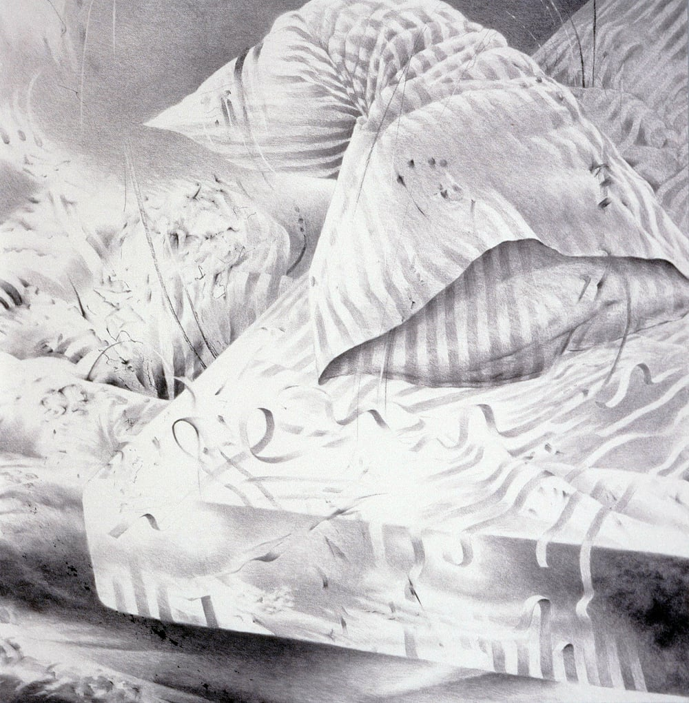 "Sleep: Petty Distractions (1994)  charcoal  45"" H x 44"" W"
