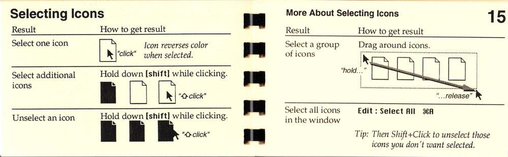 15 Selecting Icons.jpg