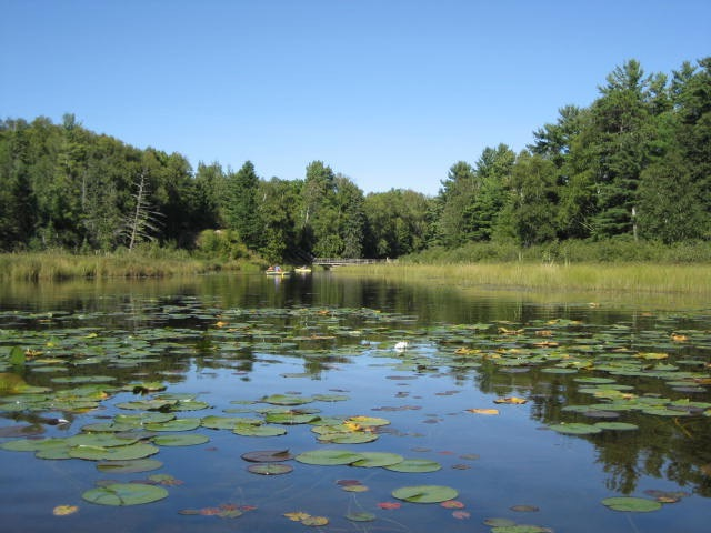 The Lagoon in Summer