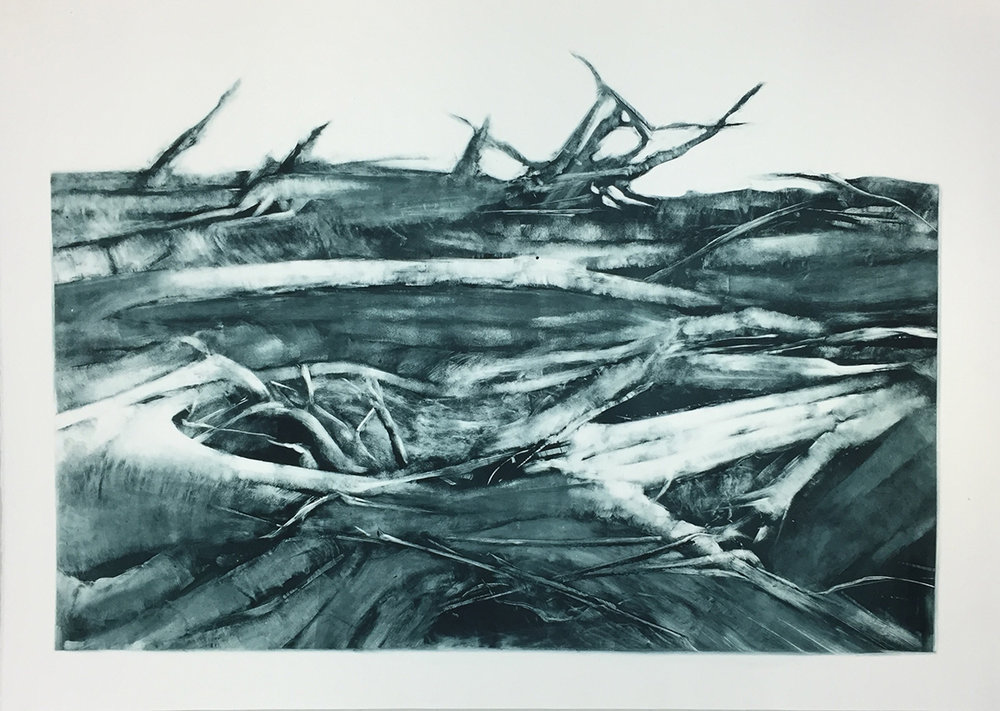 "Remains, 2016 Ink on paper (monotype print), 22"" x 30"""