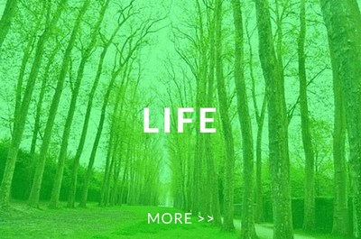 LIFE MORE >>