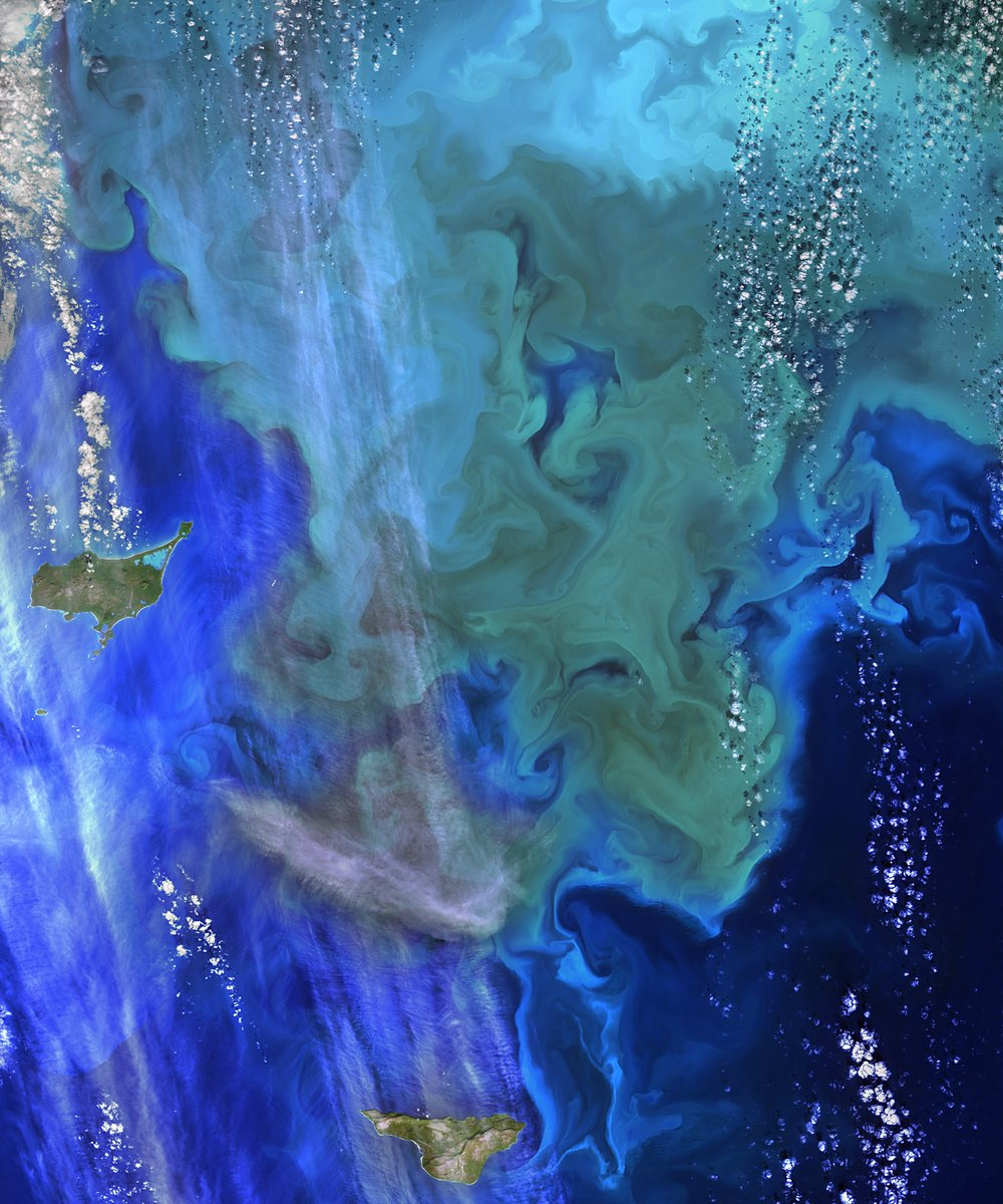 NASA_Ocean_Data_Shows_'Climate_Dance%u2019_of_Plankton_(15207225358).jpg