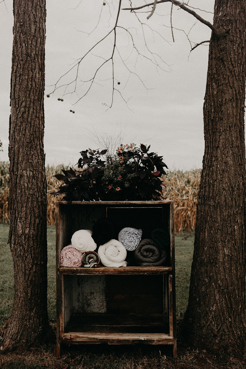 Enchanted Magical Forest themed outdoor Fall Wedding in Lancaster Pennsylvania_0442.jpg