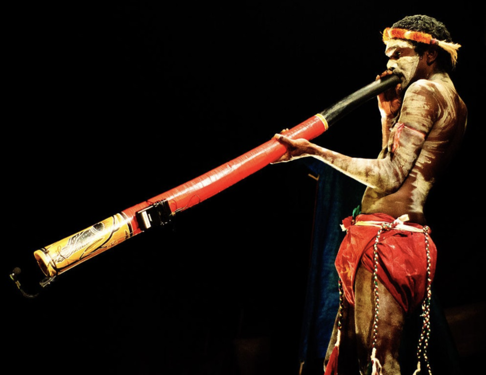 Didgeridoo - The didgeridoo (didjeridu or yidaki) is an Australian Aboriginal wind instrument endemic to the northern parts of Australia, the Arnhem Land. It is made from hollowed out logs and through breath and the vibration of the lips a drone is created.The didgeridoo is a very unique instrument specific to the breathing technique that is needed in order to play it. Circular Breathing is the name of this technique, and although it sounds impossible, this requires the musician to breathe out through the mouth and in through the nose simultaneously. This unique style of breathing attracts many to the didge either for the challenge to learn and master this skill or toexperience the incredible serenity and peace that accompanies this breathing pattern. This breathing has very positive effect on the individual playing the didge as it induces alpha brain wave patterns that are associated with deep meditation and excellent sleep. Those affected by sleep apnea are now exploring playing the didge as these brain waves that are created help to correct individuals' irregular sleep patterns.Aside from the breathing techniques, didgeridoo players use a variety of different rhythms, drones and use of voice, to create very unique sounds. While listening to the didge you may pick up on the sound of kangaroo bounding through the outback or a kookaburra cackling in a gum tree or perhaps a dingo