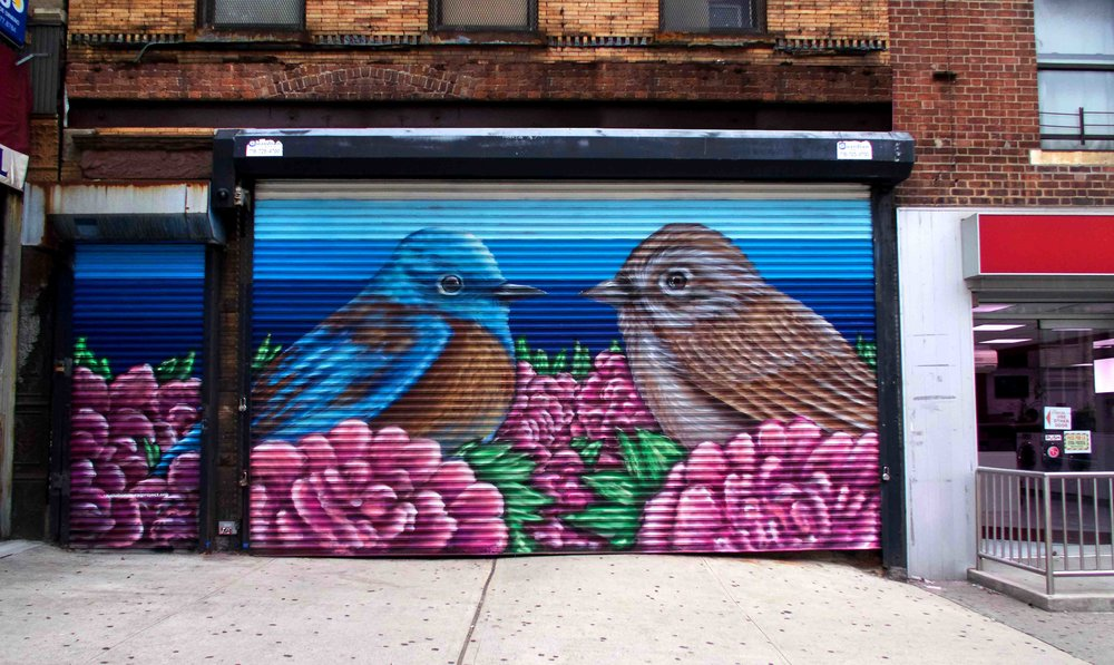 New York City , New York  September 2016  Spray Paint, 25x15 ft  Funded by the National Audubon Society  Facilitated by Gitler Gallery for the  Audubon Mural Project