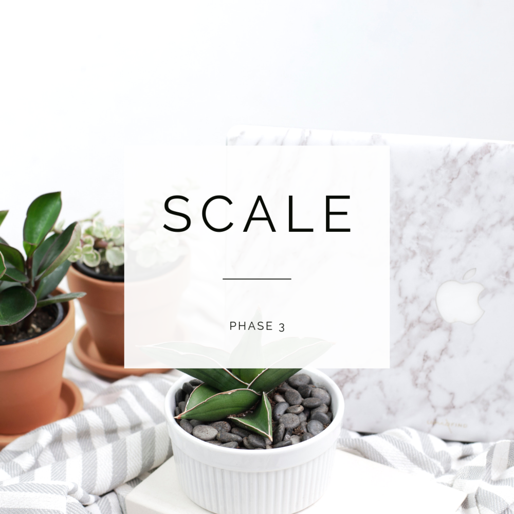 PHASE 3:Scale Your Business to Six-Figures and Beyond - * Stop relying on 1:1 clients* Create your signature group program* Create a launch plan that you love* Scale your business in a healthy and sustainable way*so much more