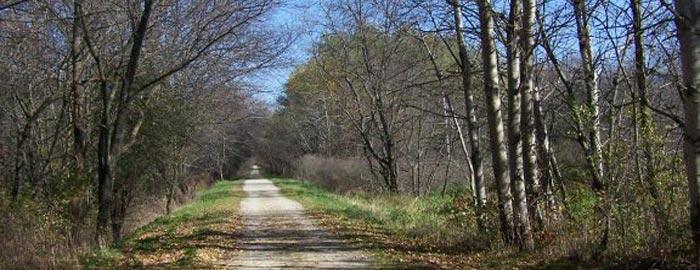 trail700x270.jpg