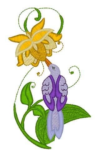 Hummingbird6.jpg