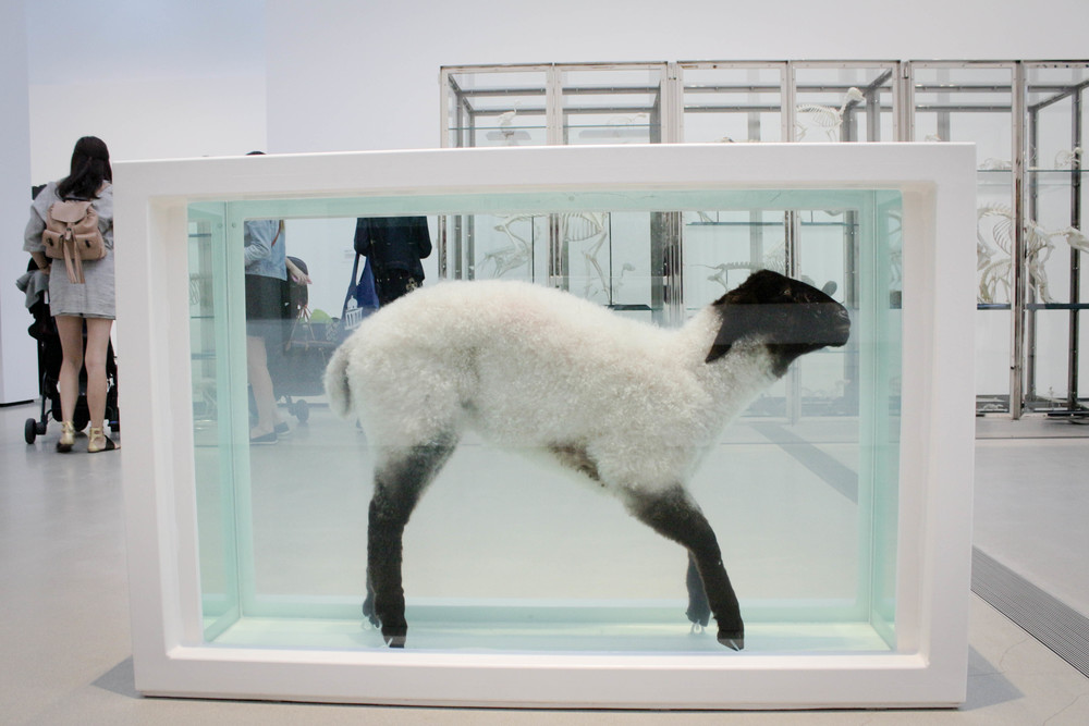 Damien Hirst Away From the Flock