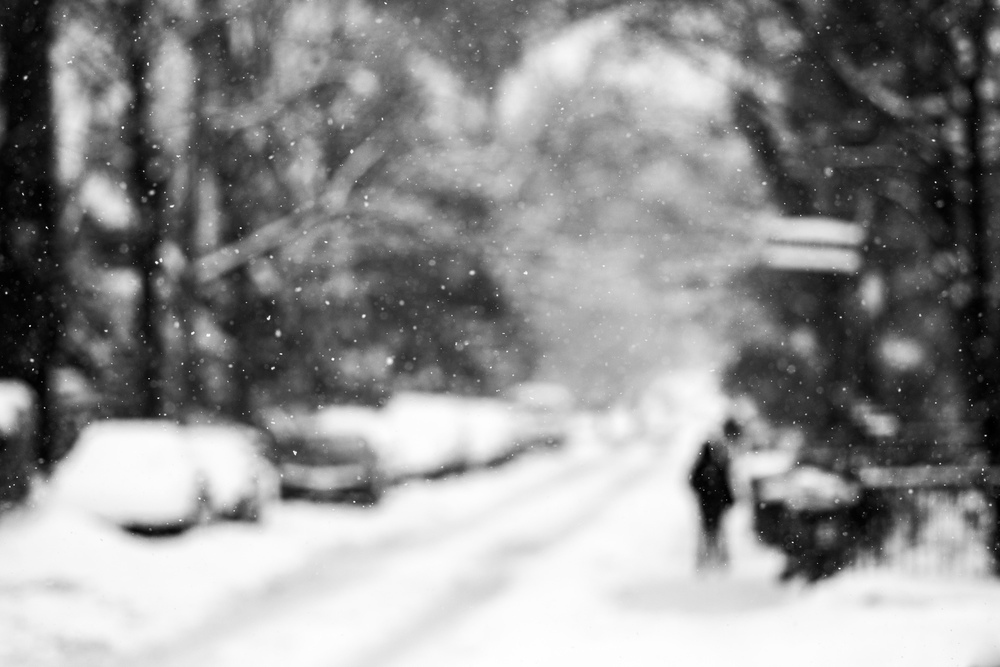 hovering-snow-focus_cabbagetown_01.jpg