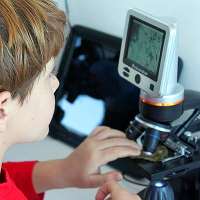 4 microscope2.jpg