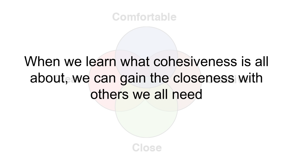 Welch Relationship Model copy 15.png