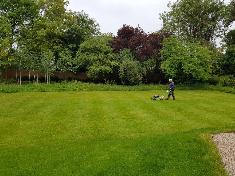 One man went to mow...apprentice Dan Fuller takes lawn care in his stride