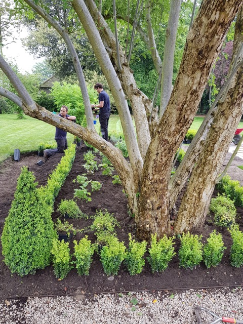 Apprentice Robbie Matthews works alongside Abbotswood gardener Jordan Parrett