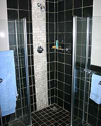 Silver-blue-shower.jpg