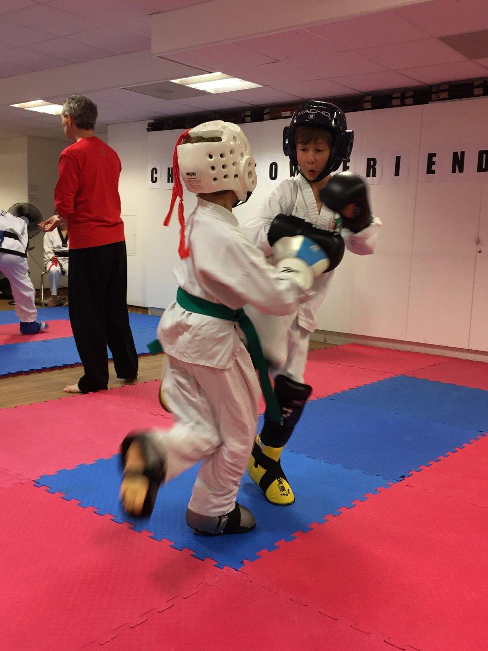 martial art 2.jpg