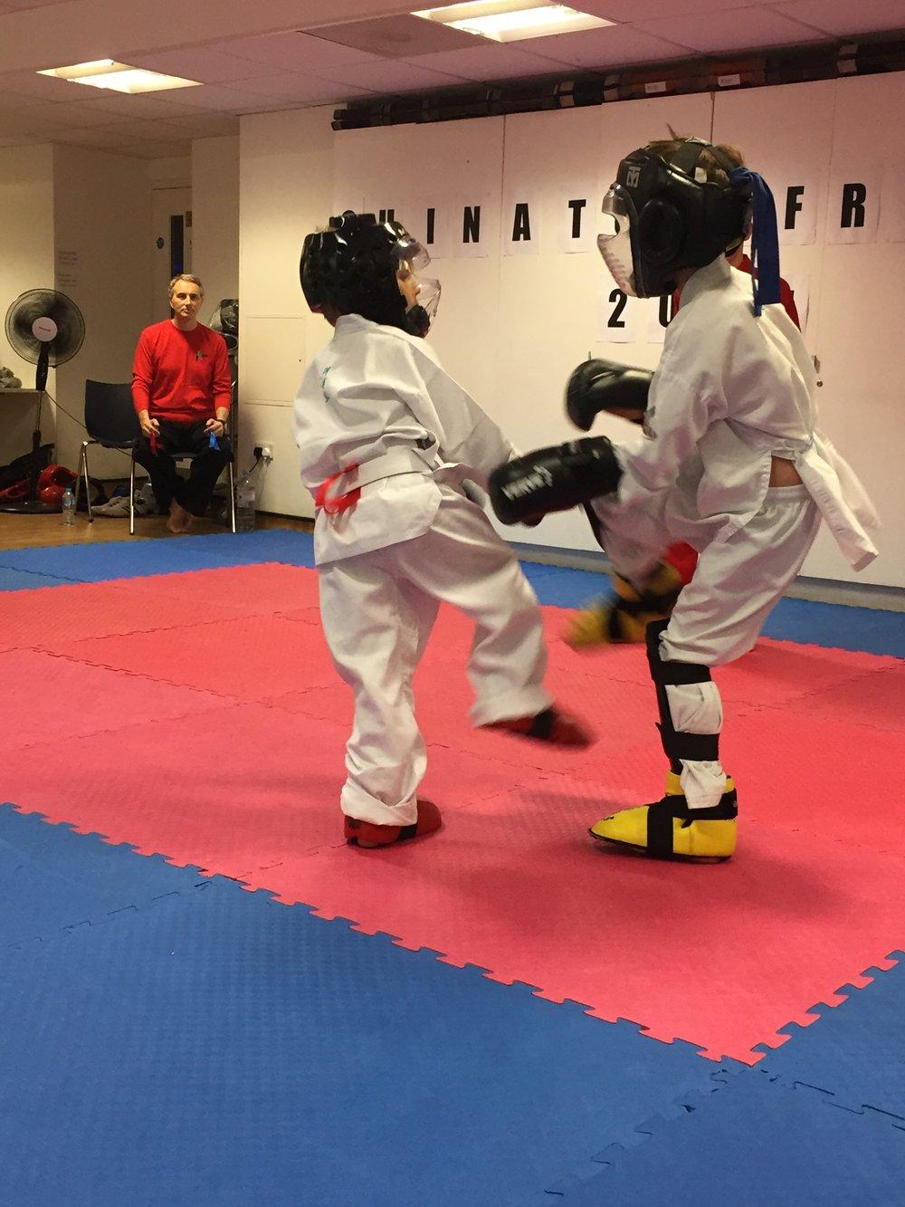 martial art 4.jpg