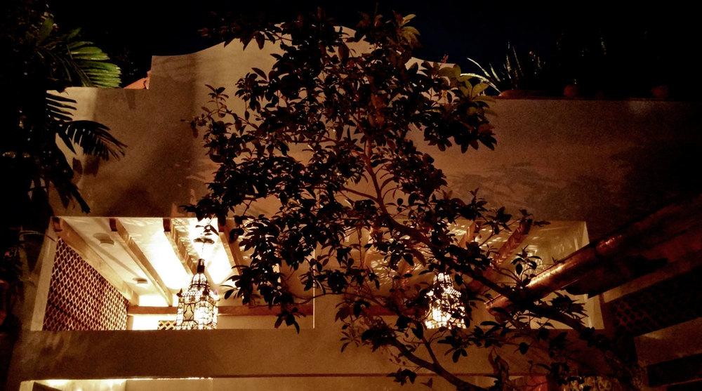 Casa-Joyero-Sayulita-43-tree-at-night-35.jpg