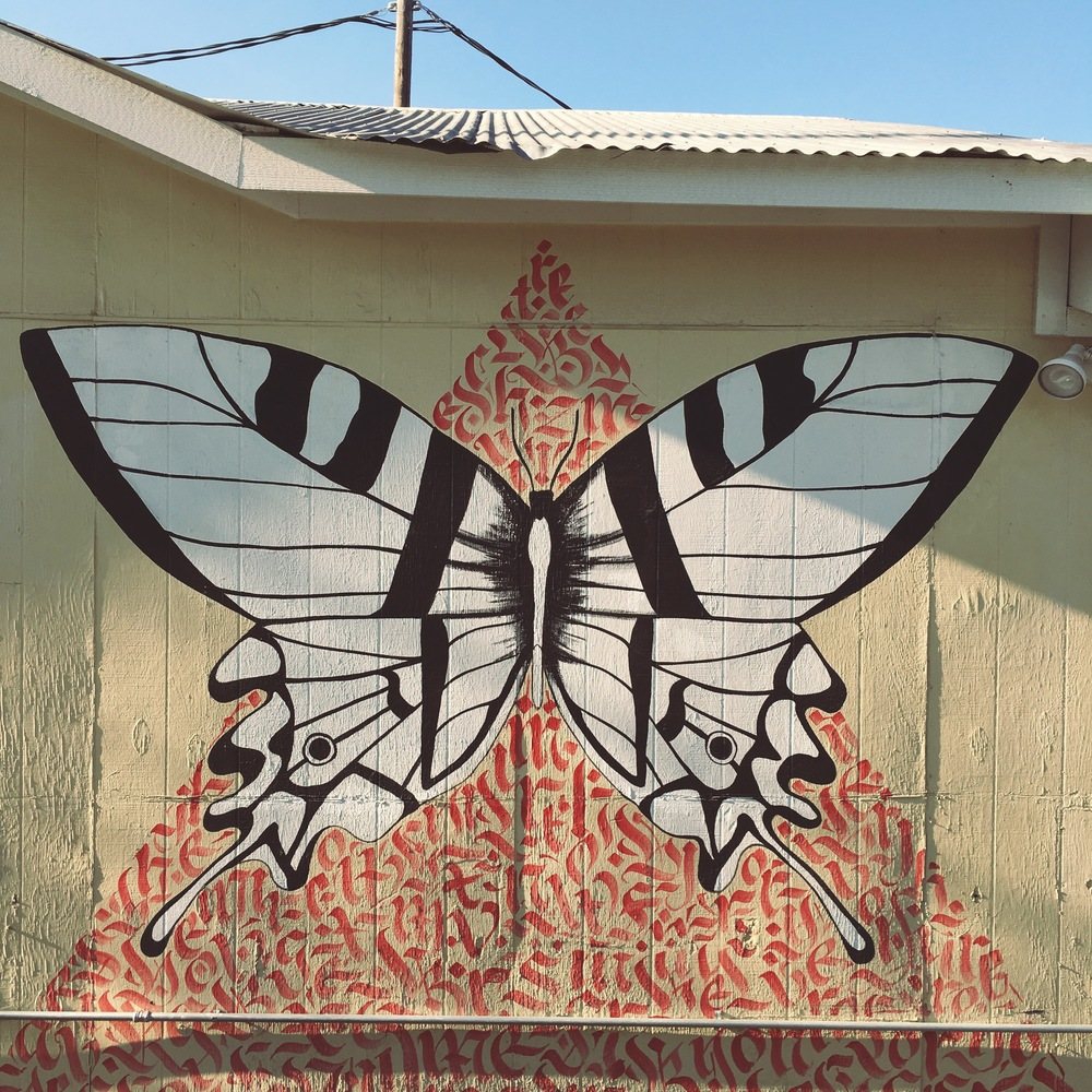 Butterfly mural at the  Art for the People  gallery