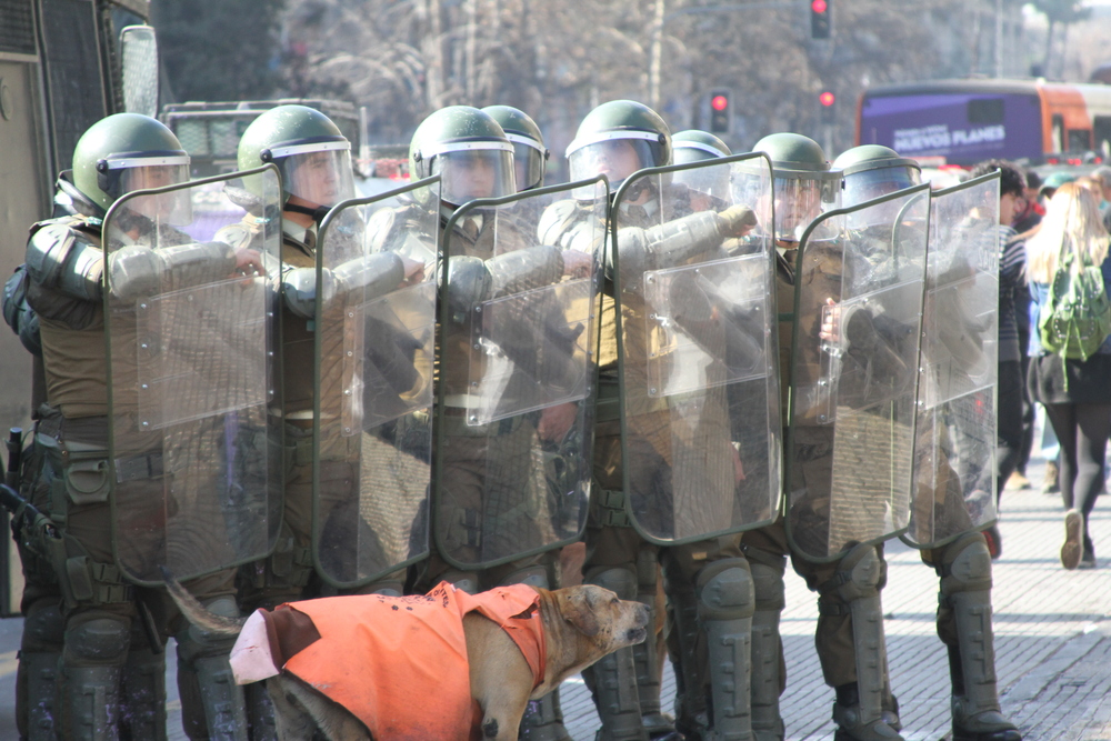 Police men defending themselves from stone throwers