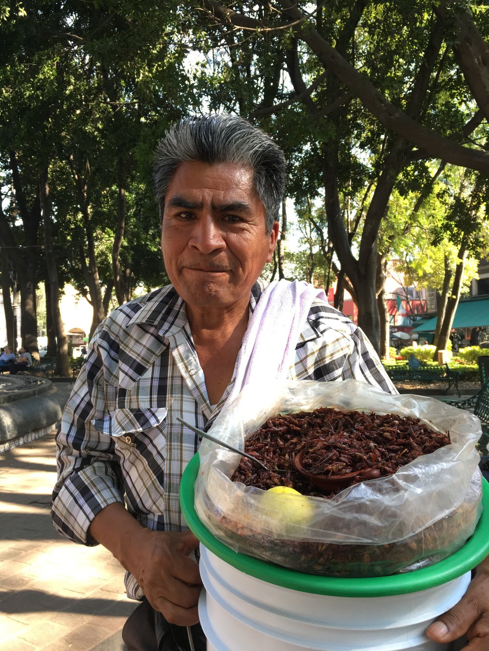 Hombre selling Spiced Crickets on the Streets in Coyoacan (He charged me two Pesos for having taken this photo, the nifty fellow)