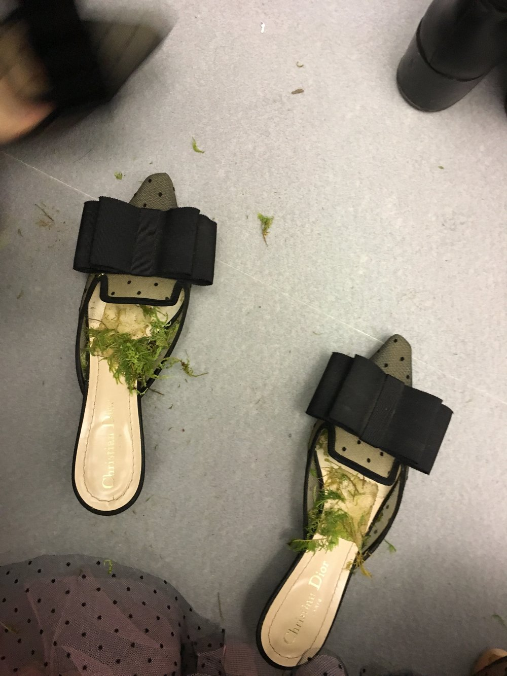 My Shoes filled with moss after I stepped off the Runway