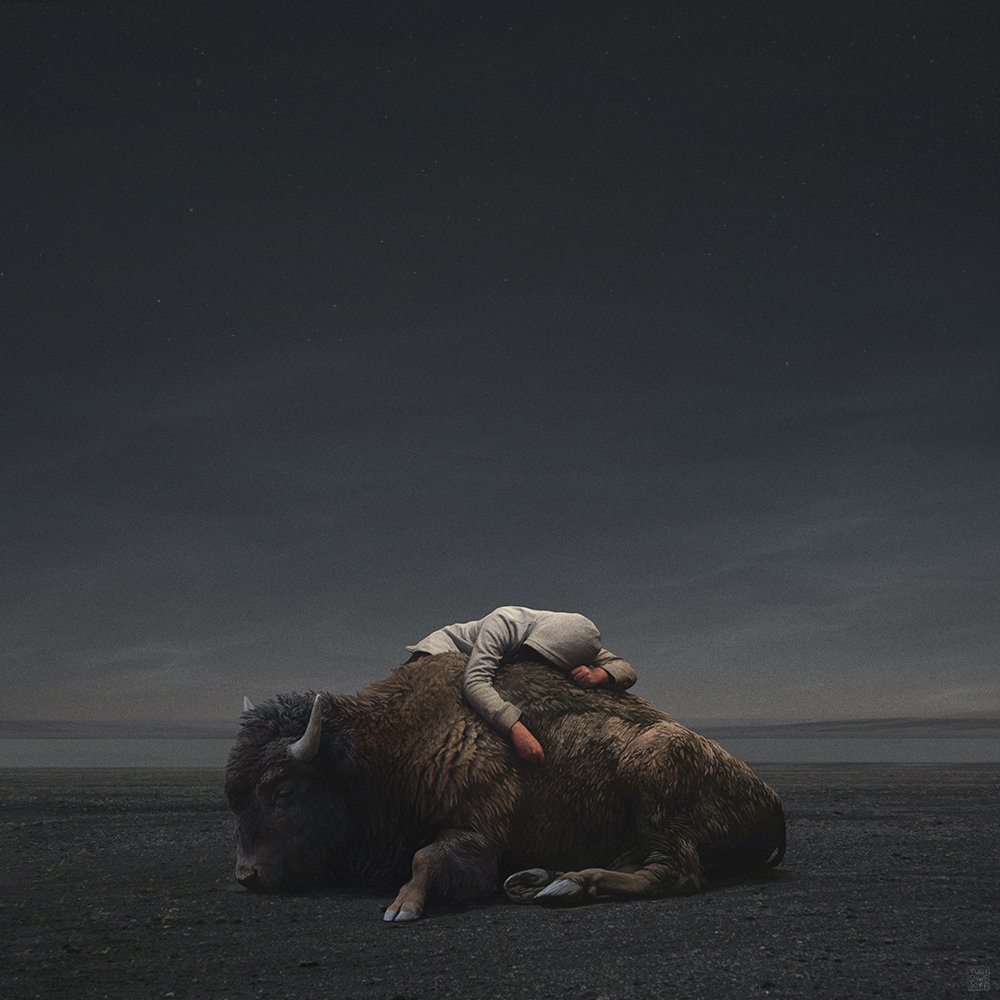 yuri-shwedoff-buffalo-recovered-internet.jpg