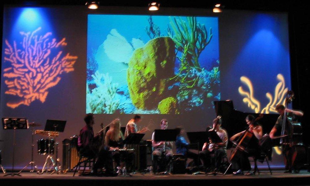 Oceanophony: La Jolla, california