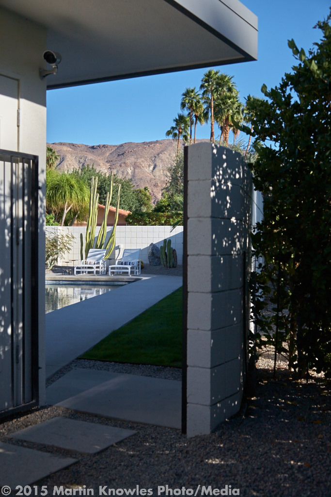 Palm-Springs-Modernism-Week-4358.jpg
