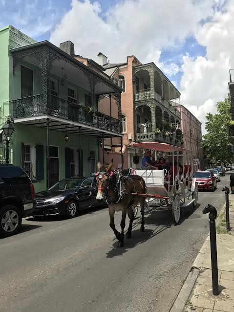 fun french quarter.jpg