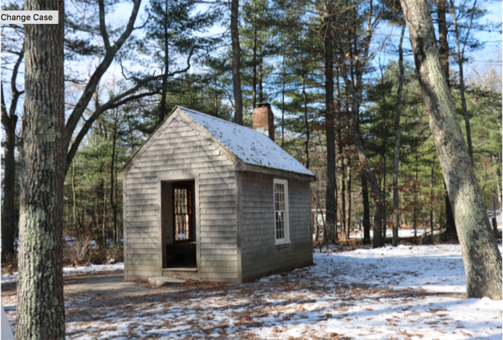 Replica of Thoreau's homestead