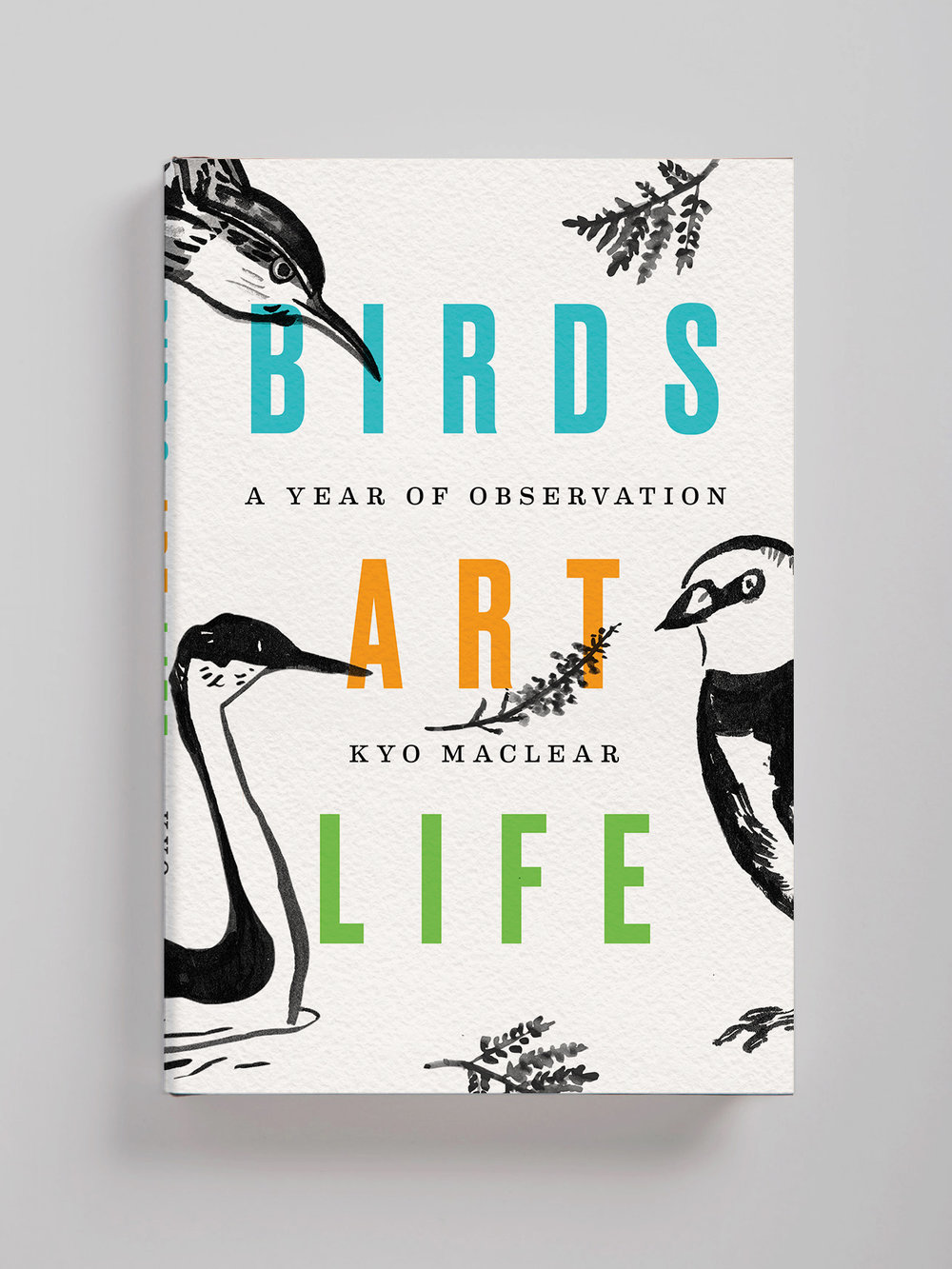 Lauren Peters-Collaer—Birds Art Life