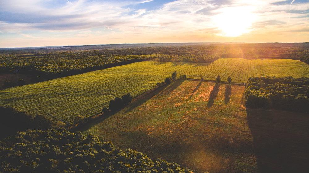 Harvest-Area-Aerial.jpg