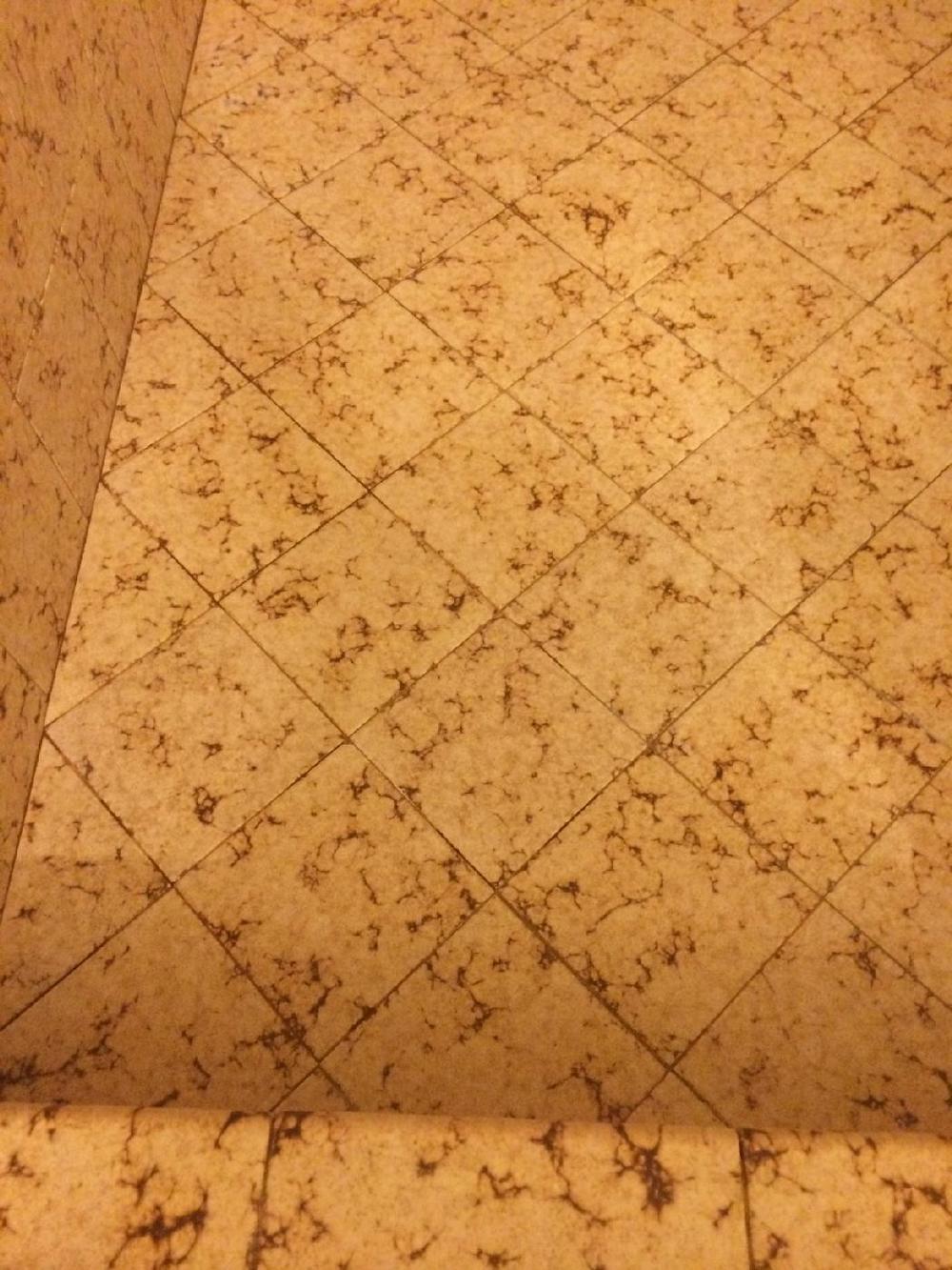 Shower Floor_After.jpg