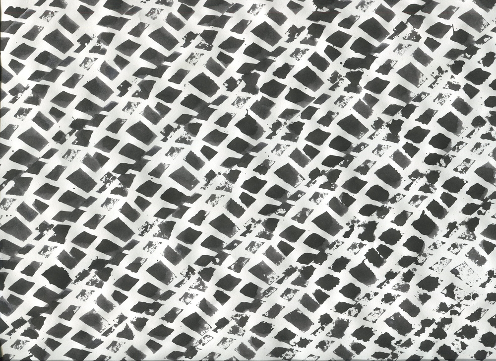 leopard015.jpg