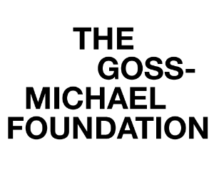THE MICHAEL GOSS FOUNDATION