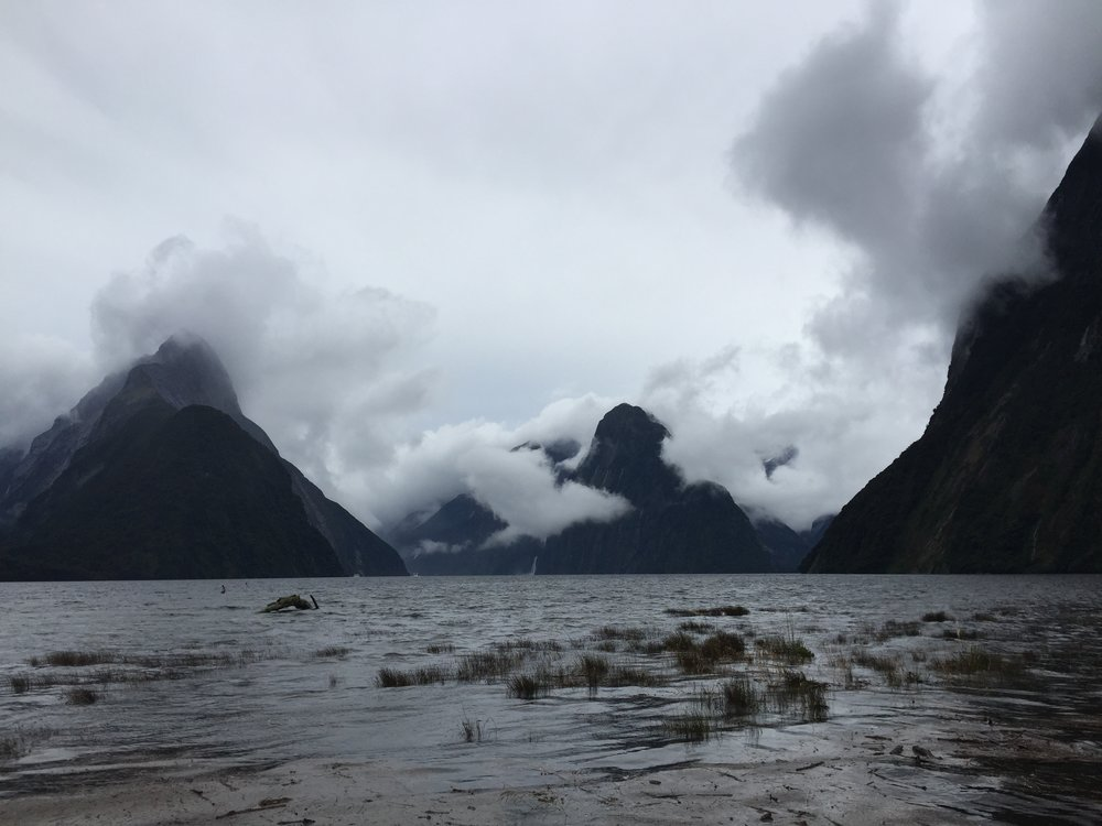 Milford Sound, looking a bit underworldly